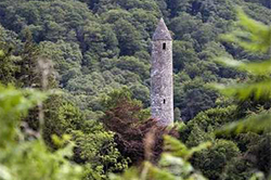 Irish tower in a forest