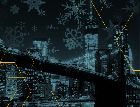 New York landscape with snowflakes