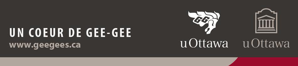 Pied de page institutionnel avec logo de partenaire – couleur (bande de marque avec logo gris vertical)