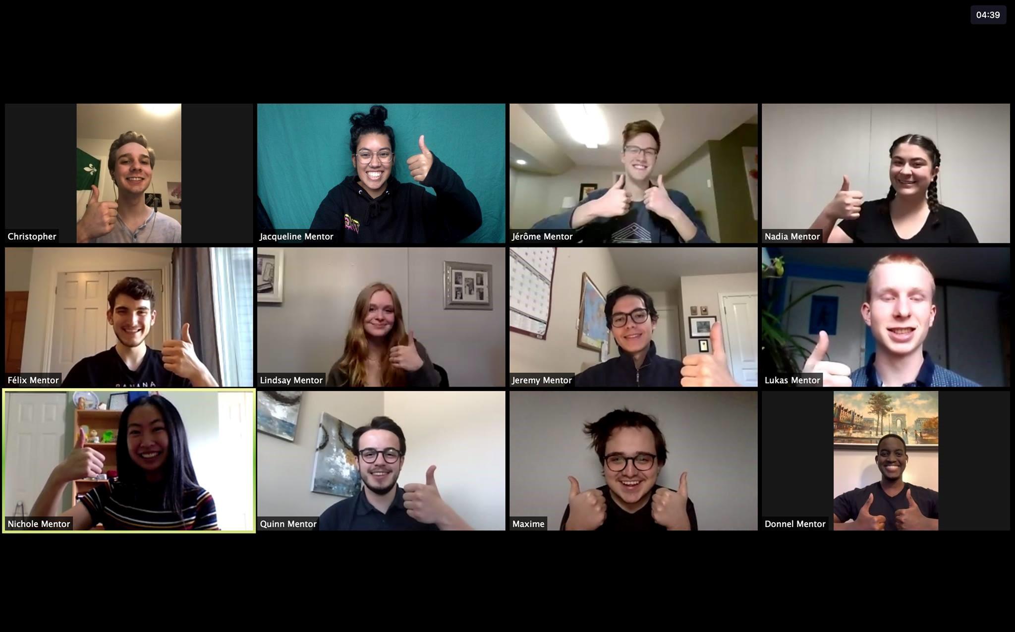 Zoom meeting of regional mentors.