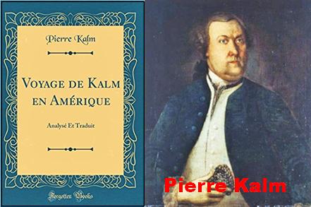Pierre Kalm