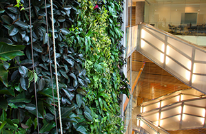 Specialization in Environmental Sustainability