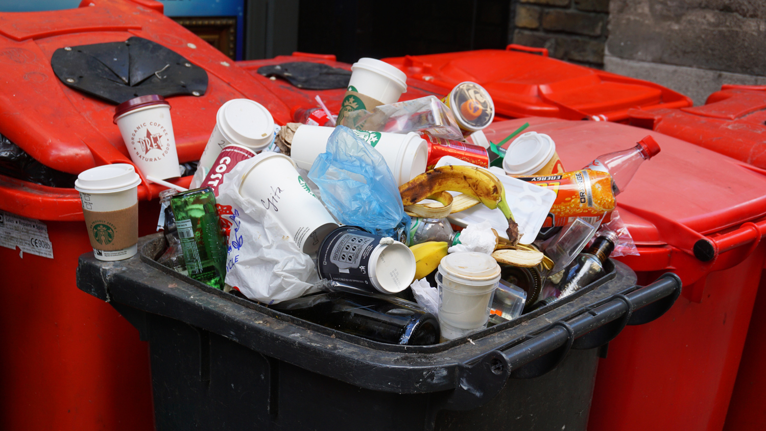 University of Ottawa Institute of the Environment - office waste blog