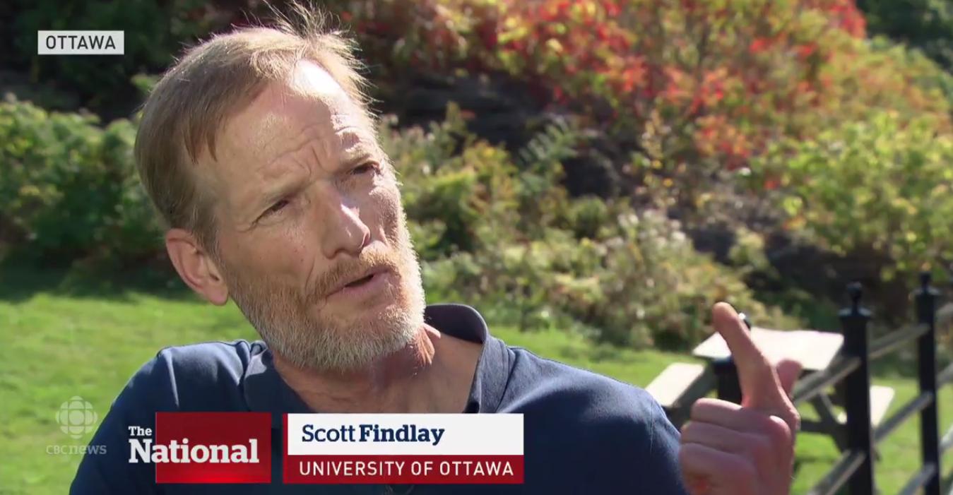 Scott Findlay