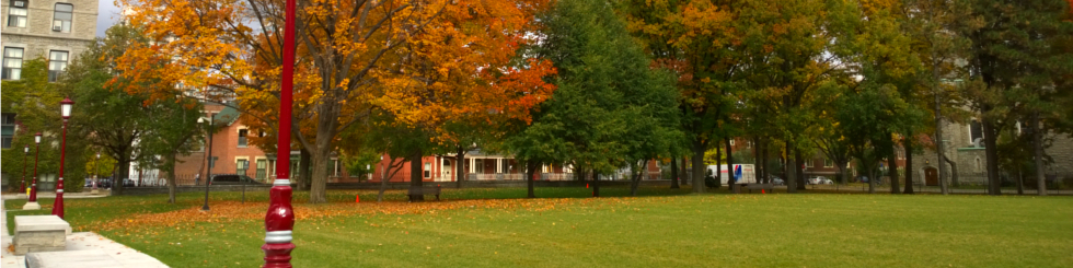 The lawn in front of Tabaret in automn