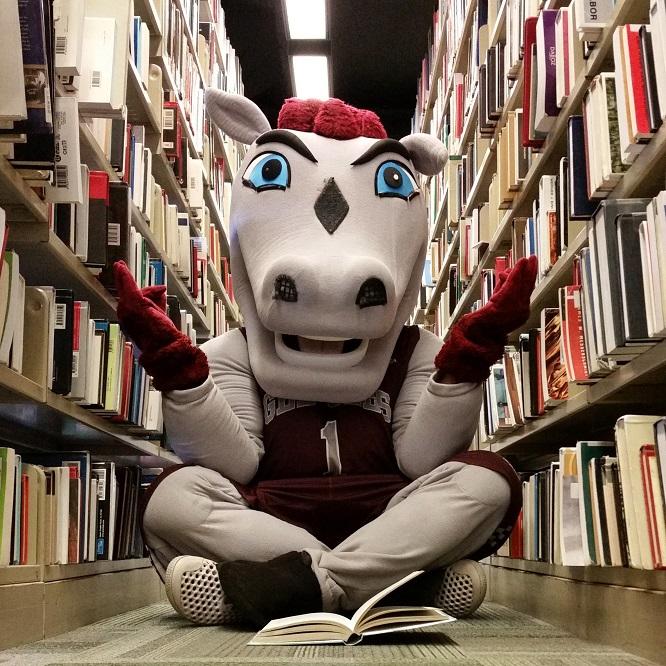 La mascotte Gee-Gee assis entre deux étagères remplies de livres.