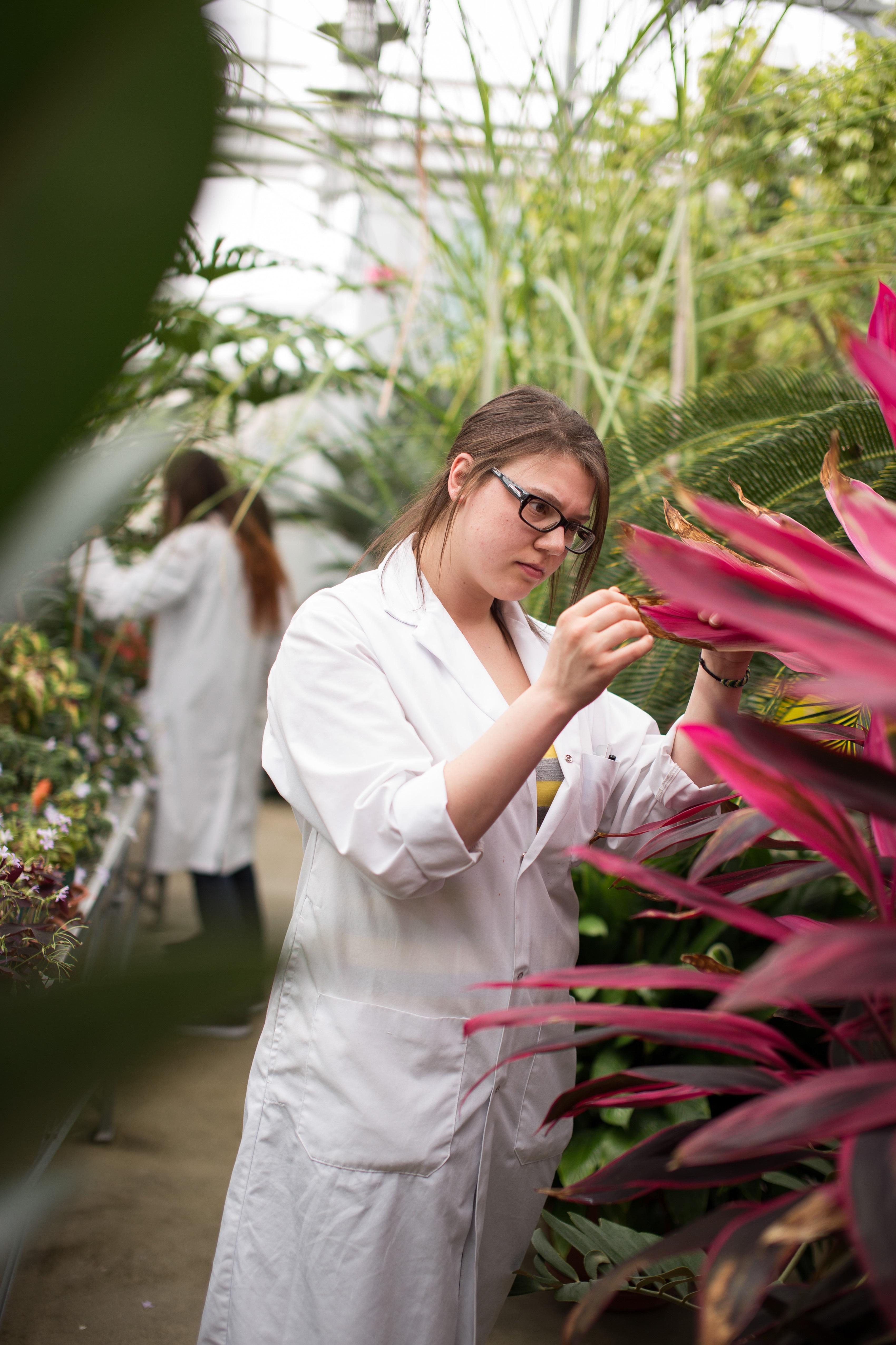 Une étudiante vêtue d'un sarrau blanc observe une plante au feuillage rouge.