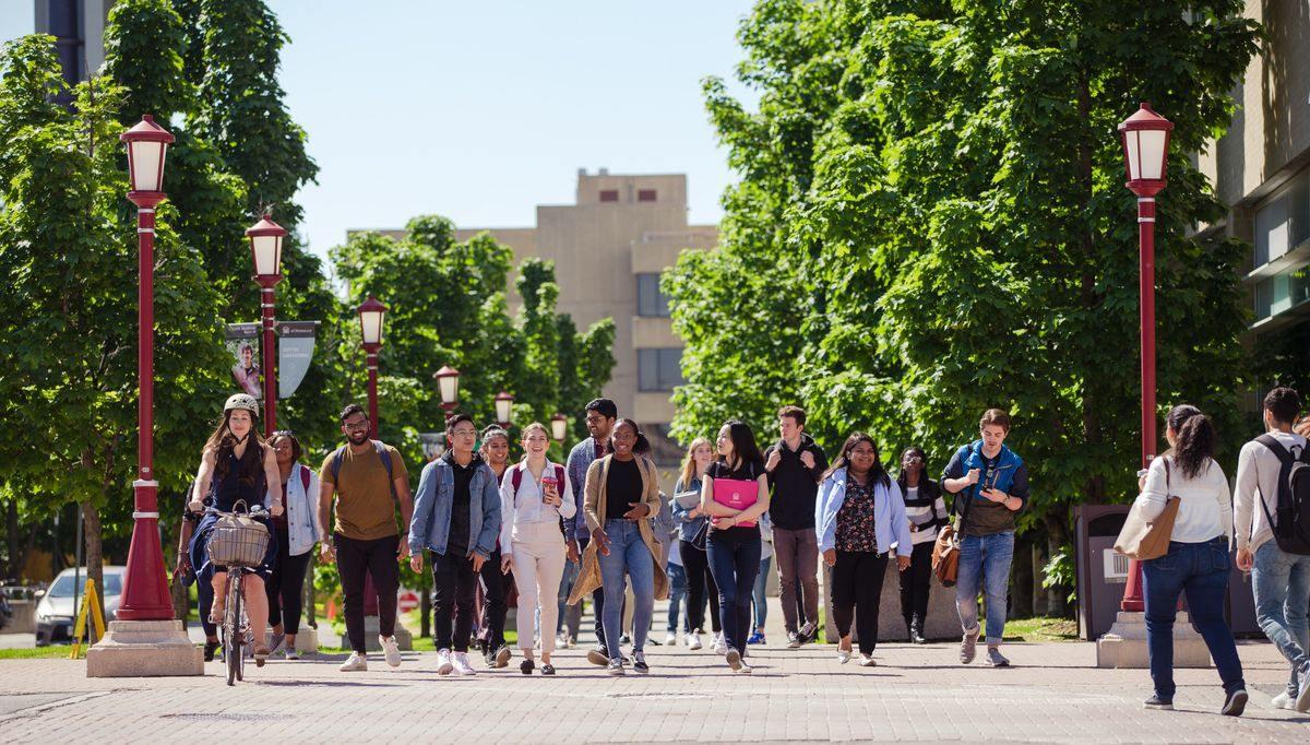 Un groupe d'étudiants marchent dehors, sur le campus.