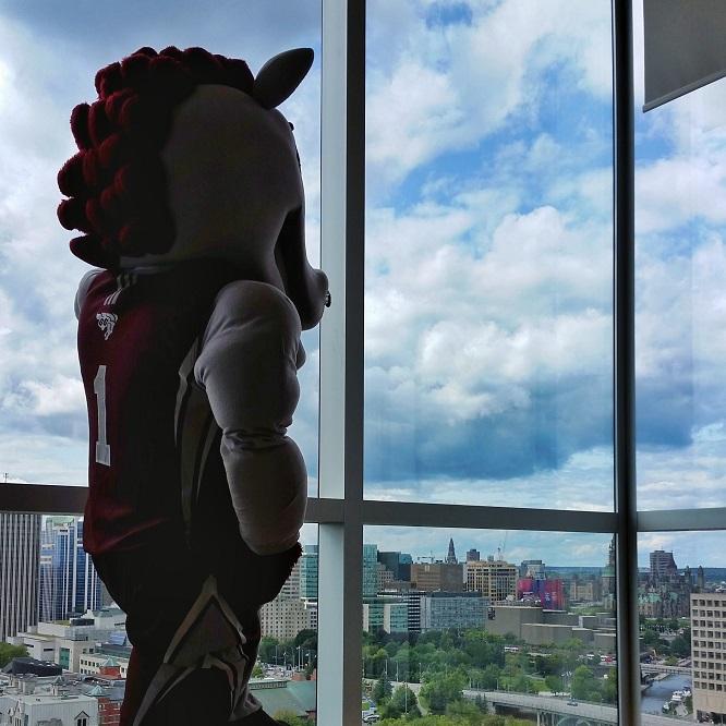 La mascotte Gee-Gee observe la ville d'Ottawa à travers une vitre.