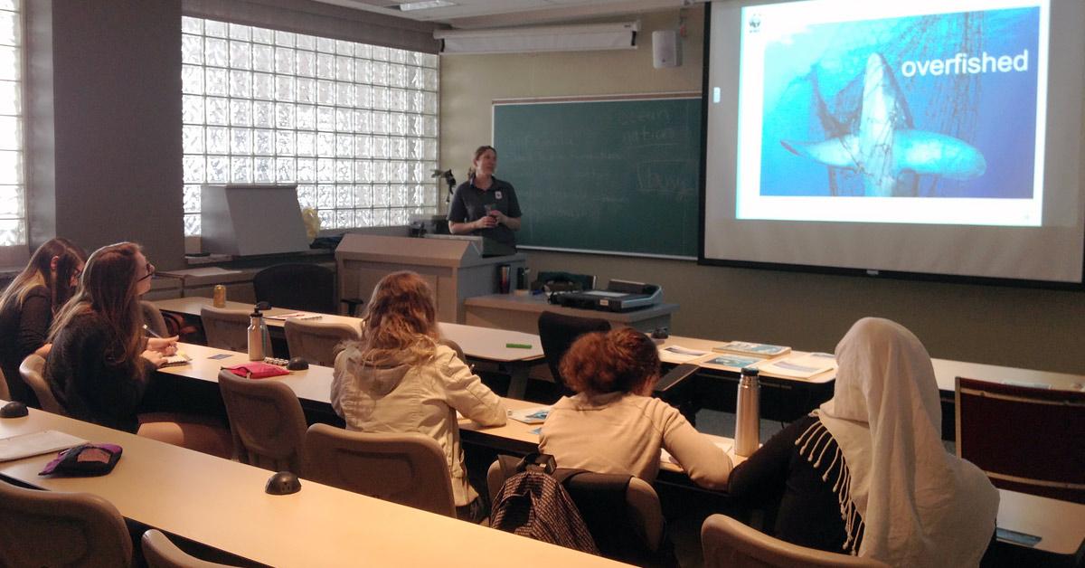 Des élèves écoutent attentivement une présentation vidéo sur les océans lors d'un mini-cours.