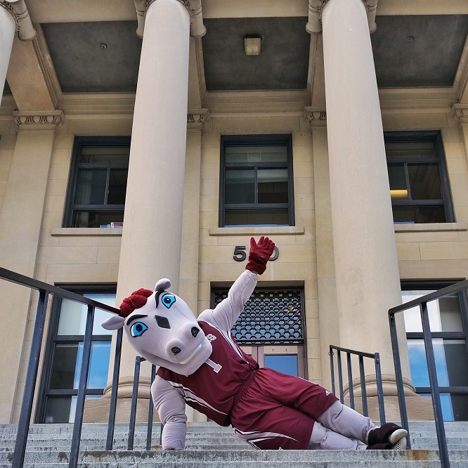 La mascotte Gee-Gee étendu sur les marches extérieures du pavillon Tabaret.