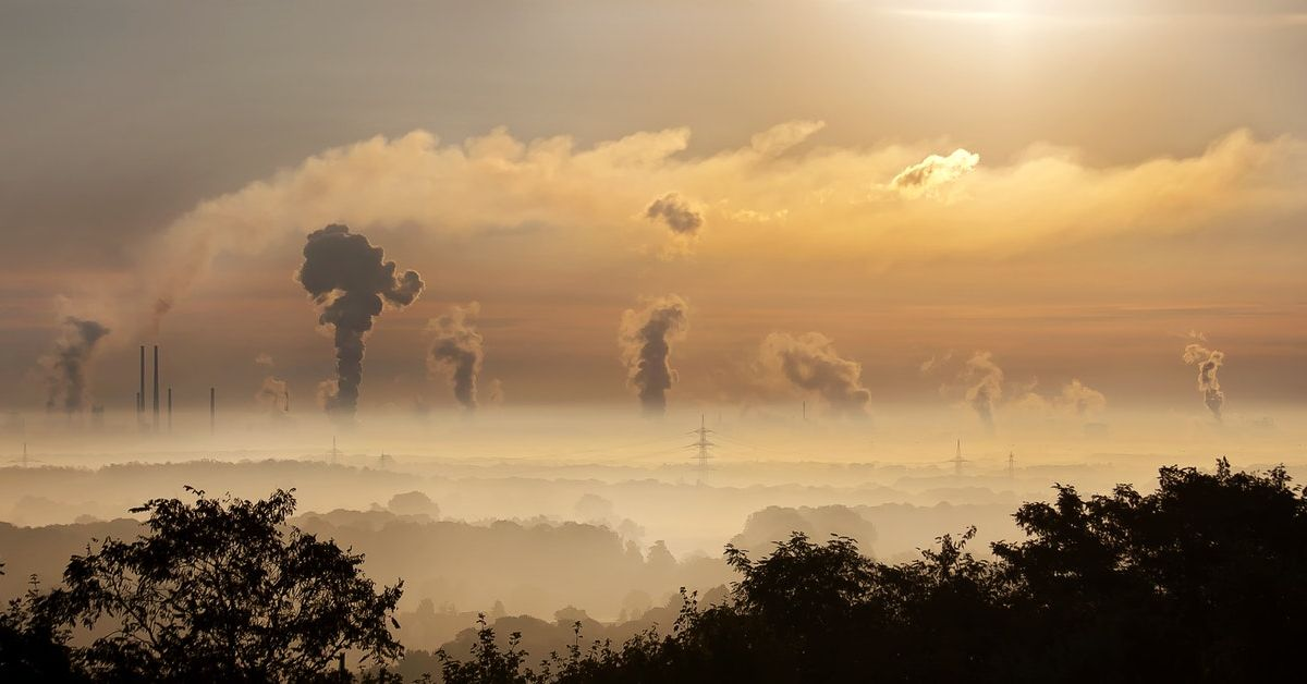 What to know about the carbon tax