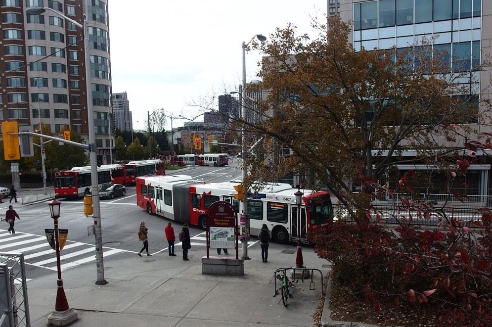 OC Transpo buses near uOttawa's Desmarais building