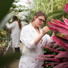 A female student wearing a white coat is observing a plant with red leaves.