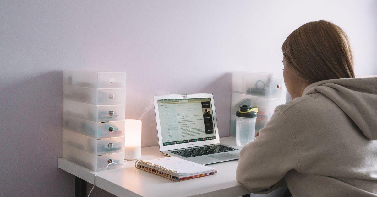 Étudiante vue de dos, assise à son bureau devant un écran d'ordinateur.