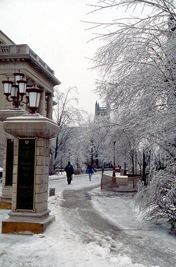 Des arbres recouverts de glace et le pavillon Tabaret.