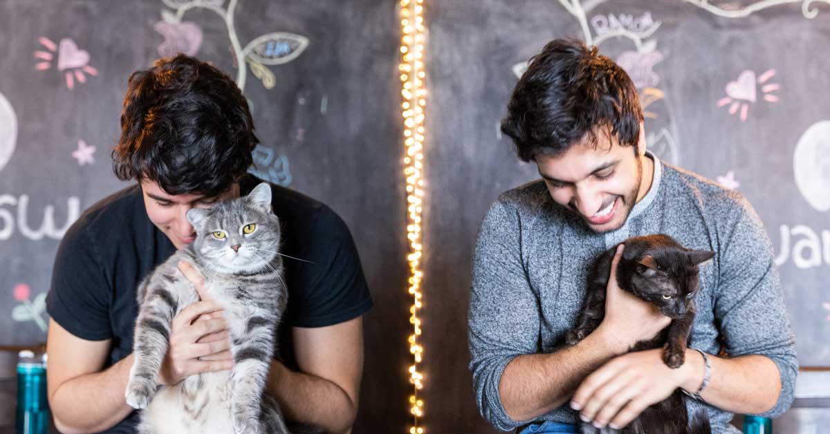 Ismail Benmbarek and Ali Kazal each hold a cat in their hands.