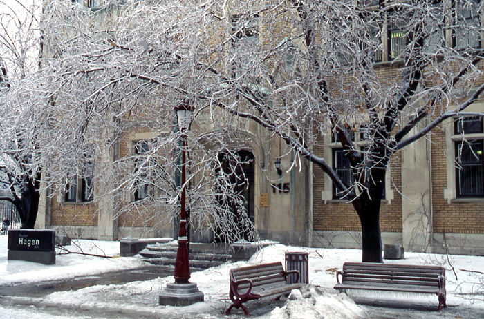 Trees covered with ice in front of Hagen Hall.