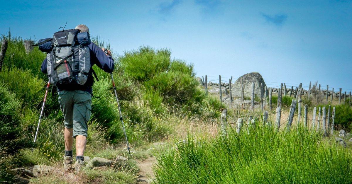 Un homme vu de dos, portant un sac à dos et des bâtons de marche, en randonnée sur un sentier.