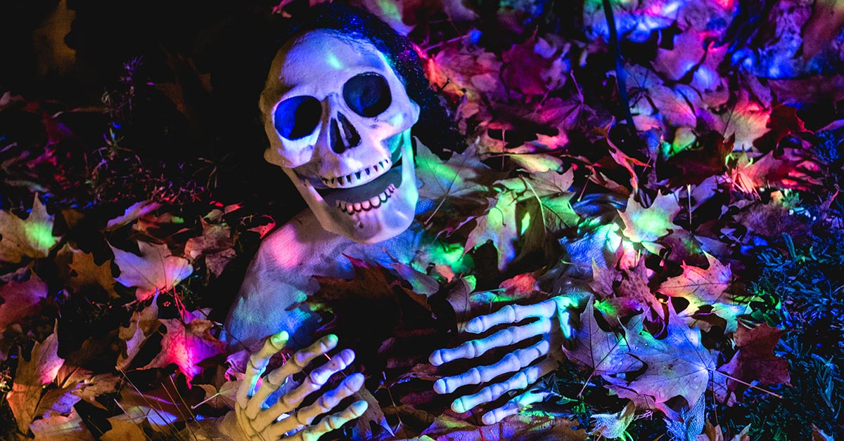 A Halloween display made with a plastic skeleton partially covered in autumn leaves and eerie lighting.
