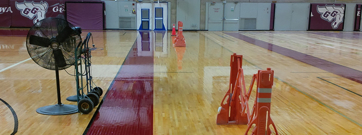 A freshly painted and waxed floor in one of uOttawa's gyms.