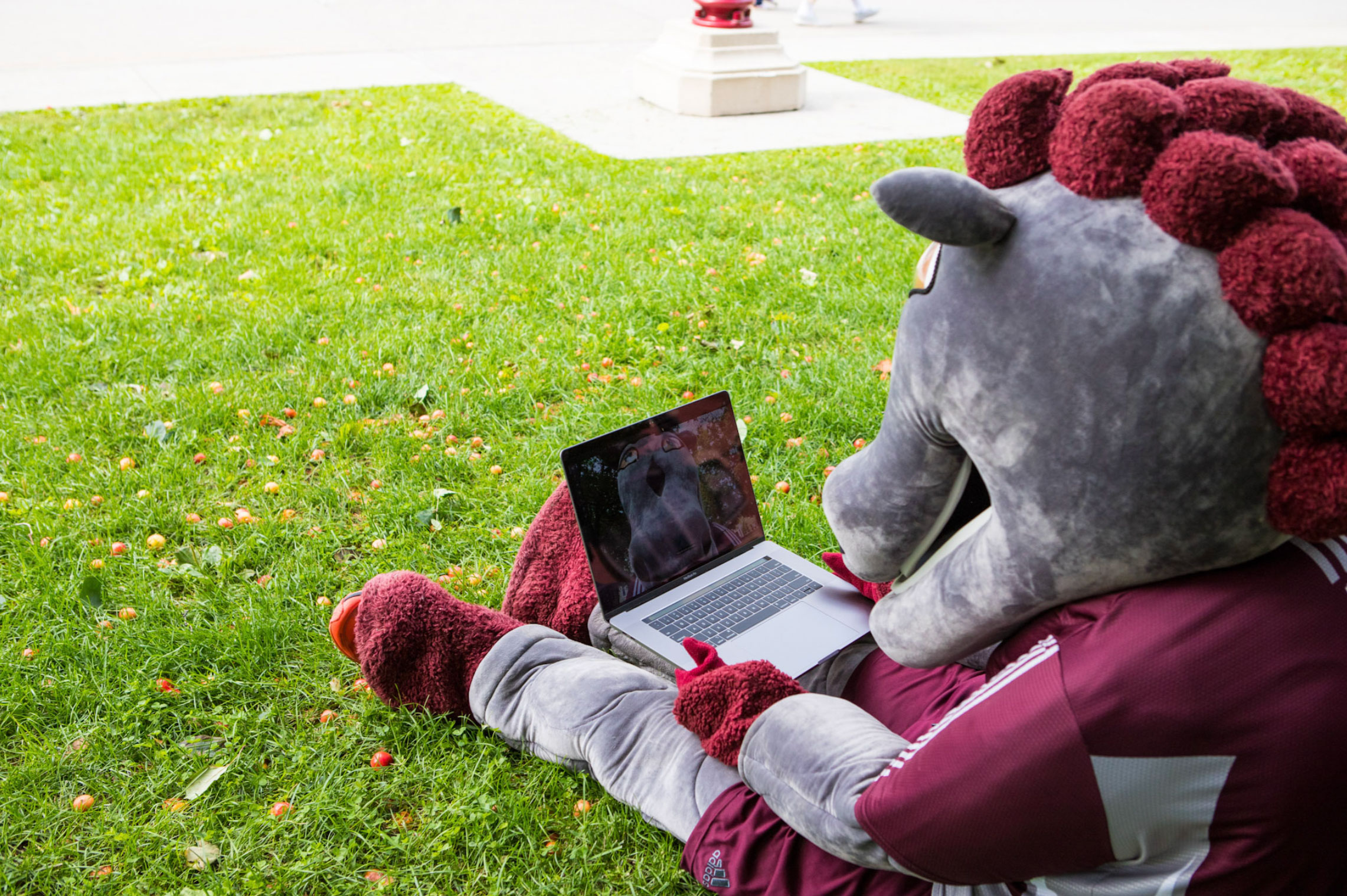 The GeeGee mascot consults the new website on a computer