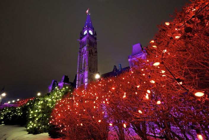 The Peace Tower and shrubbery decorated with holiday lights and photographed at night.