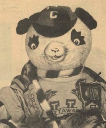Illustration détaillée d'un panda en peluche portant un chapeau, une écharpe rayée et un chandail.