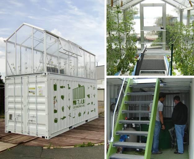 une serre installée sur un contenant maritime, l'intérieur de la serre où sont cultivées des tomates, et l'intérieur du système aquacole.