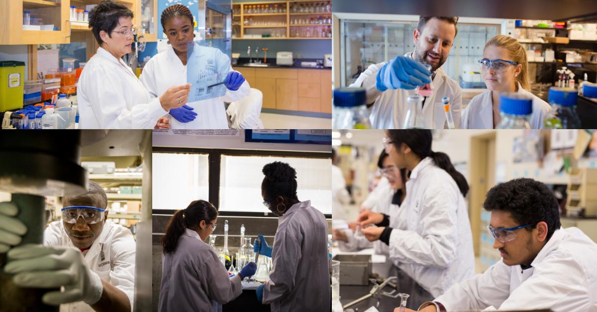 Collage photo de chercheurs issus de la diversité ethnique et de genre.