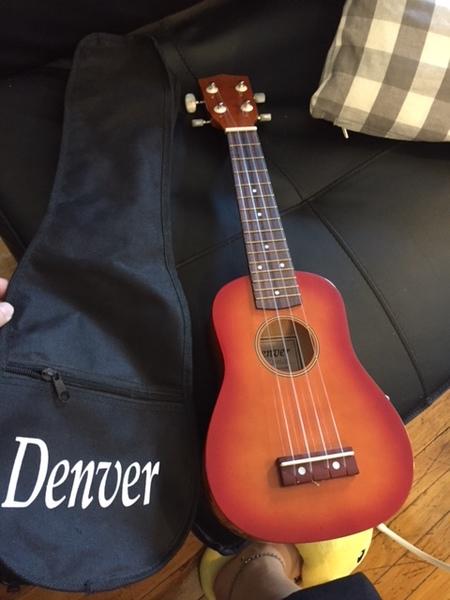 A ukulele.