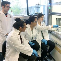 Étudiants devant des éprouvettes dans un laboratoire de biochimie.