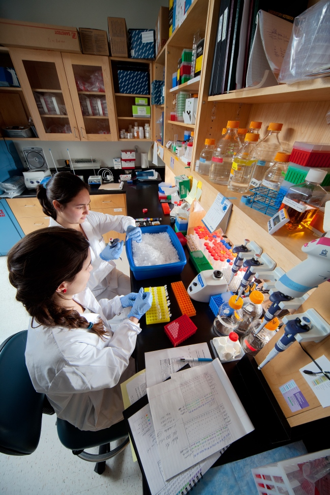 Two girls wearing white lab coats and blue gloves conduct science experiments.