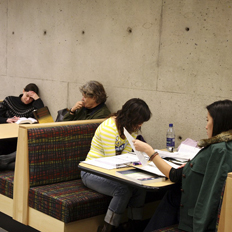 Students are studying at tables