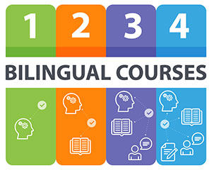 Bilingual courses in four steps with icons. Step 1 in green: icon of a brain understanding information. Step 2 in orange: icon of a brain understanding information and a book. Step 3 in purple: icon of a brain understanding information, a book and a person with a speech bubble. Step 4 in blue: icon of a brain understanding information, a book, a person with a speech bubble and a paper and pencil