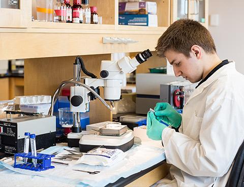 Jamie Ghossein porte un sarrau blanc et des gants bleus. Il est assis devant un microscope, à son poste de laboratoire.