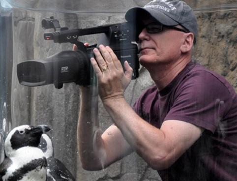 Randall Dark filming penguins in 3D
