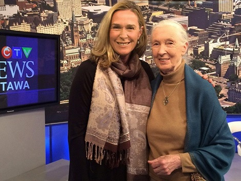 Julie Findlay and Jane Goodall stand in a TV studio in front of a wall-sized backdrop of Ottawa.