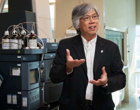 Image of Laurie Chan examining samples in his lab.