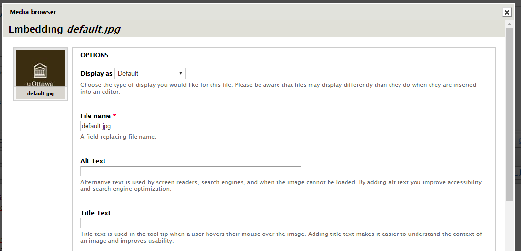 Adding images directly to the text editor [CKEditor] | Web