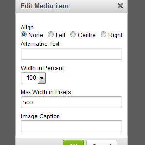 The new Edit Media dialog for managing image properties